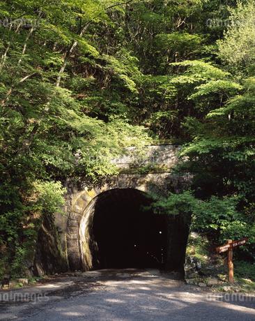 旧天城トンネルの写真素材 [FYI04136411]