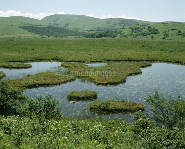 八島湿原の写真素材 [FYI04136420]