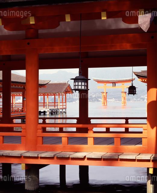 厳島神社の写真素材 [FYI04136471]