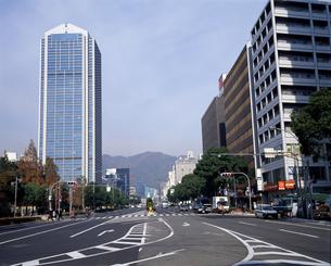 フラワーロードと神戸市役所の写真素材 [FYI04136480]