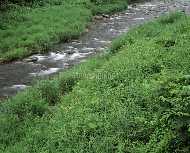 草原と流れの写真素材 [FYI04136571]