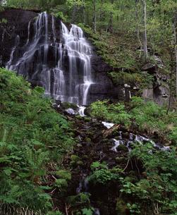 五両の滝の写真素材 [FYI04136591]