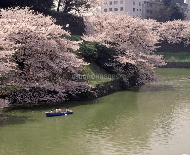 桜とボートの写真素材 [FYI04136622]