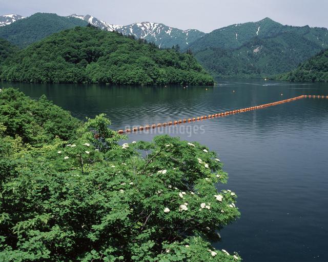 矢木沢ダムの写真素材 [FYI04136647]