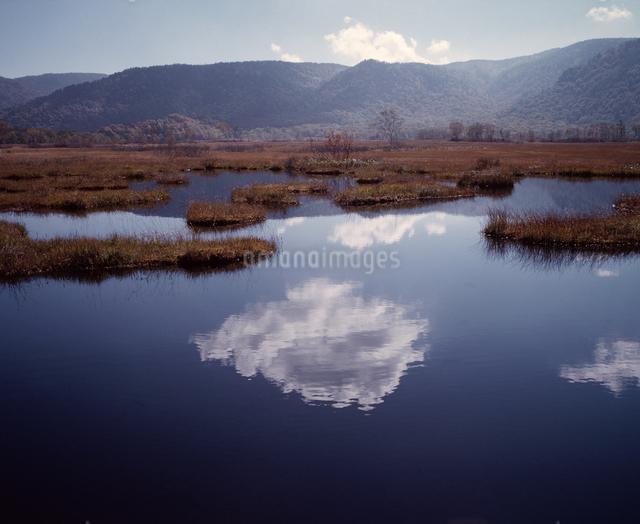 池塘に映る雲の写真素材 [FYI04136654]