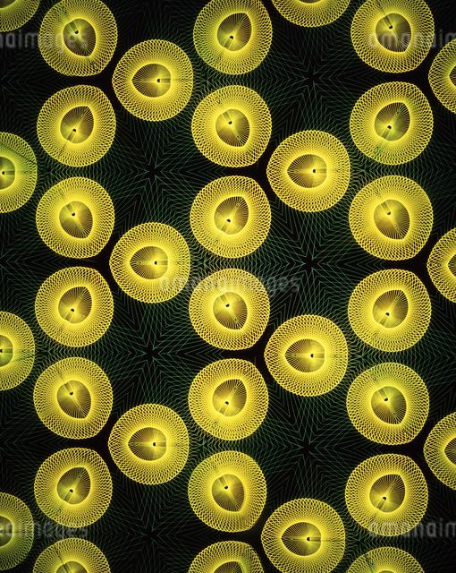万華鏡(kaleidoscope)の写真素材 [FYI04136667]