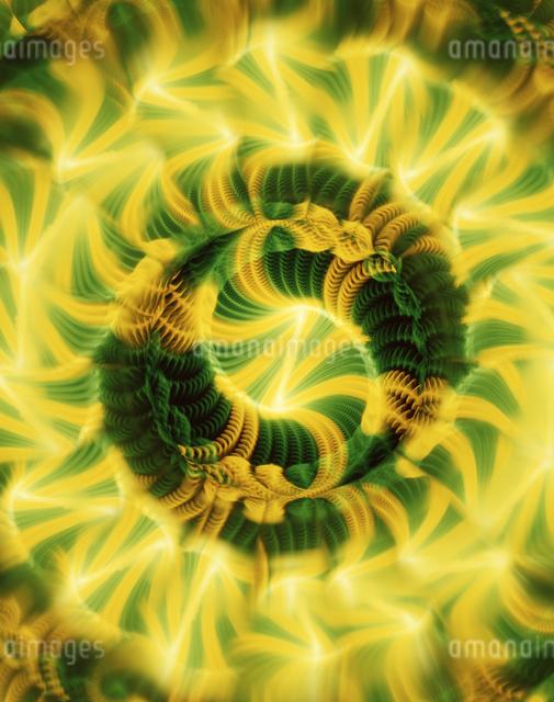 万華鏡(kaleidoscope)の写真素材 [FYI04136683]