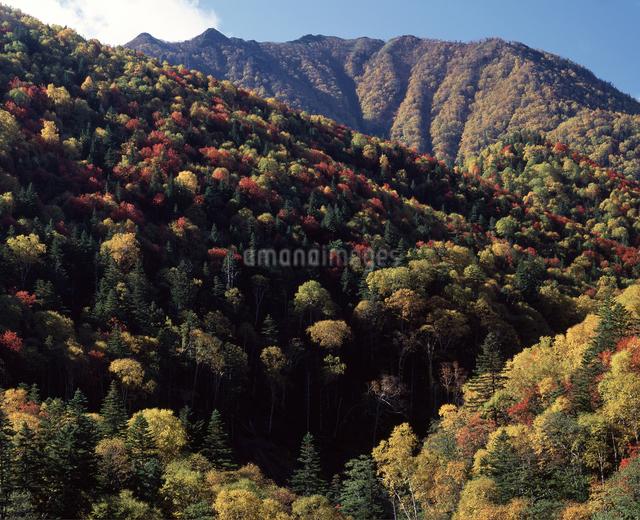 紅葉の山の写真素材 [FYI04136692]