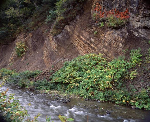 地層の写真素材 [FYI04136693]