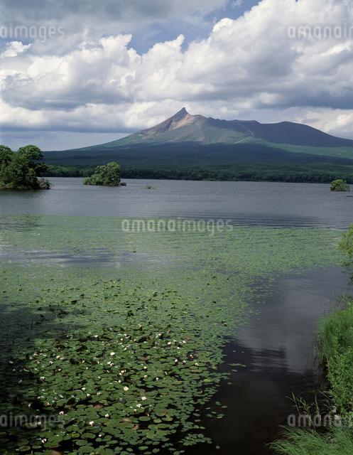 大沼と駒ヶ岳の写真素材 [FYI04136698]