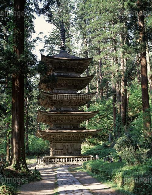 五重の塔(国宝)の写真素材 [FYI04136754]