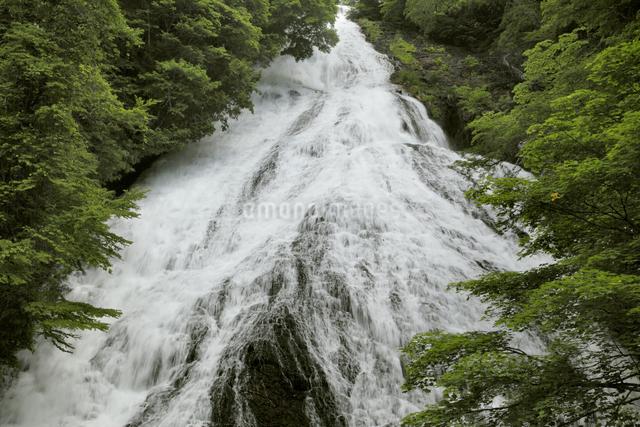 湯滝の写真素材 [FYI04136896]