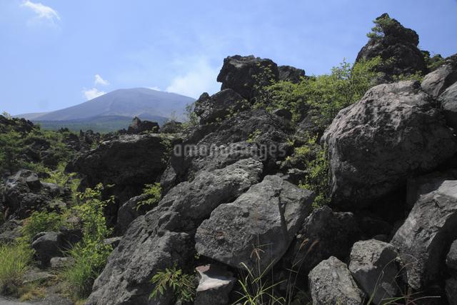 鬼押出しの溶岩と浅間山の写真素材 [FYI04136927]