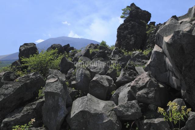 鬼押出しの溶岩と浅間山の写真素材 [FYI04136928]