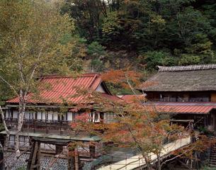 宝川温泉の写真素材 [FYI04137013]