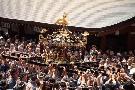 三社祭の写真素材 [FYI04137215]