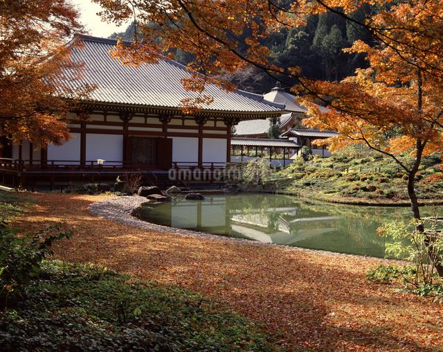 久安寺の秋の写真素材 [FYI04137331]