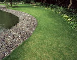 芝生と池の写真素材 [FYI04137428]