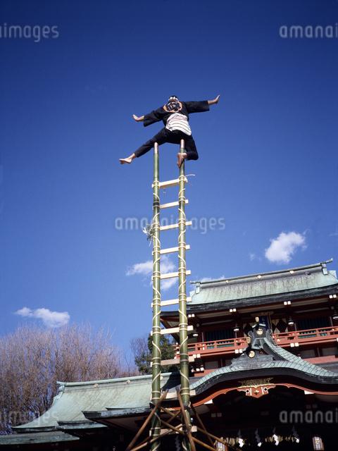 はしご乗り 富岡八幡宮の写真素材 [FYI04137449]