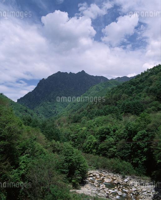 鶏冠山と西沢渓谷の写真素材 [FYI04137453]