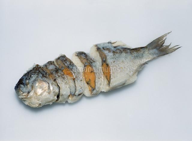 鮒寿司の写真素材 [FYI04137497]