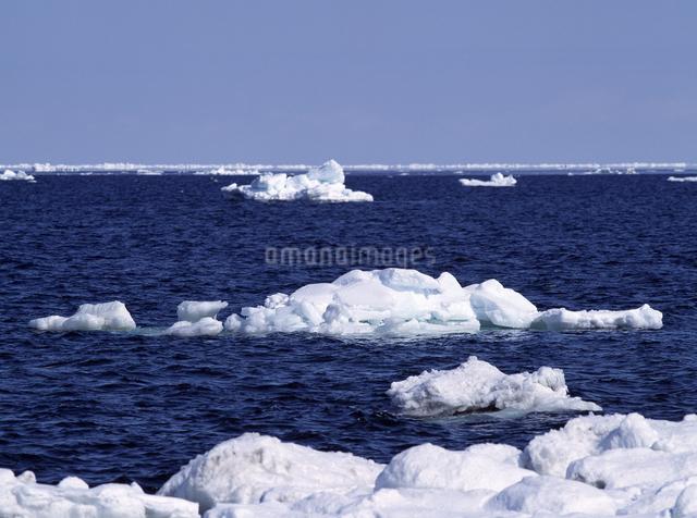 オホーツクの流水の写真素材 [FYI04137500]