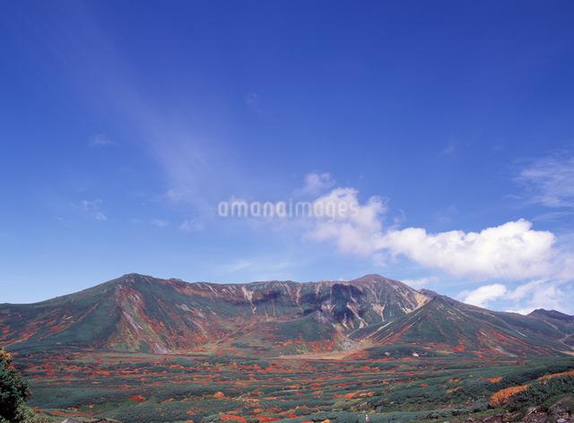 大雪山の写真素材 [FYI04137502]