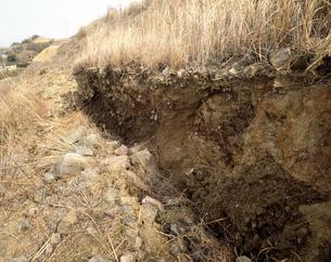 阪神淡路大震災で出た活断層の写真素材 [FYI04137522]