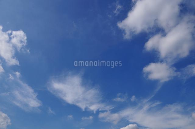 雲の写真素材 [FYI04137553]