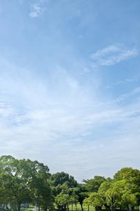 公園と青空の写真素材 [FYI04137690]