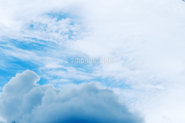 夏の空の写真素材 [FYI04137705]