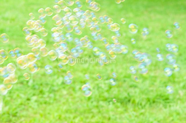 シャボン玉の写真素材 [FYI04137734]
