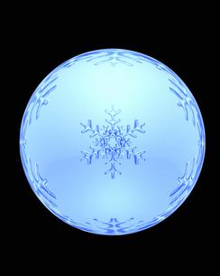雪の結晶の写真素材 [FYI04140051]