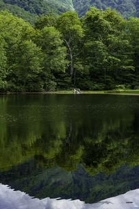 池の写真素材 [FYI04140934]