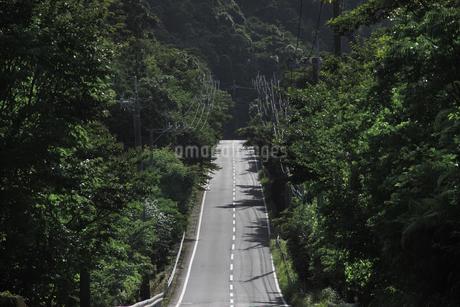 道の写真素材 [FYI04142796]