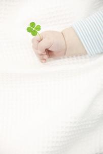 赤ちゃんの手と四葉のクローバーの写真素材 [FYI04143348]