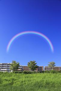 草原と樹木とマンションと虹の写真素材 [FYI04144004]