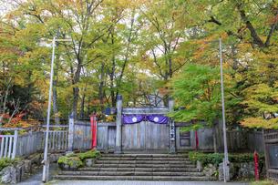 栃木県 平家の里の写真素材 [FYI04144210]