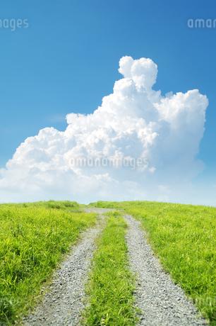 草原の道と入道雲の写真素材 [FYI04145307]