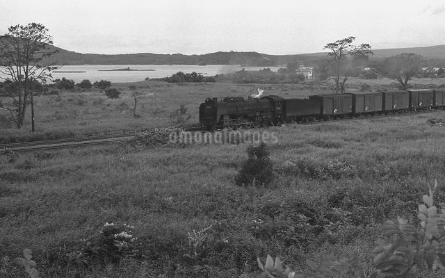 大沼公園を行く函館本線D52形蒸気機関車の写真素材 [FYI04145825]