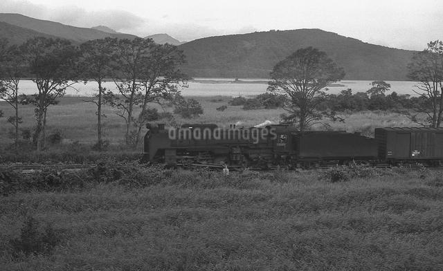 大沼公園を行く函館本線D52形蒸気機関車の写真素材 [FYI04145826]