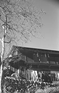 奥多摩・小菅村,民家の写真素材 [FYI04145849]
