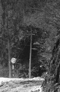 奥多摩,丹波山村お祭,深山を往く青梅街道の写真素材 [FYI04145894]