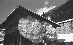 奥多摩,丹波山村,金竜寺の写真素材 [FYI04145925]
