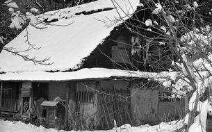 奥多摩,塩山市,廃屋の写真素材 [FYI04145972]