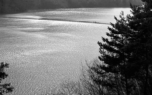 奥多摩湖の写真素材 [FYI04146004]