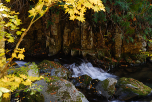 渓流の写真素材 [FYI04147714]