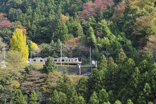 JR青梅線E233系の写真素材 [FYI04147908]