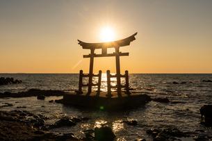 金比羅神社の写真素材 [FYI04149171]