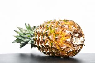 白背景のパイナップルの写真素材 [FYI04149598]
